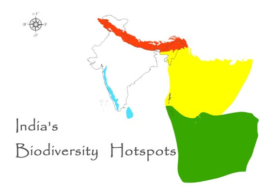 biodiversity-Hotspots india