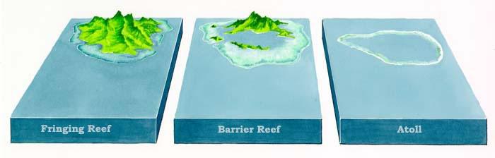 fringing Reefs, barrier Reefs, Atoll Reefs