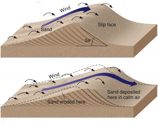 Barchan dune formation