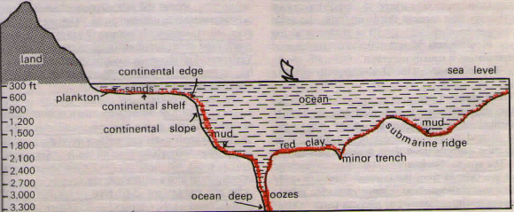 Continental Self - Ocean Floor Division
