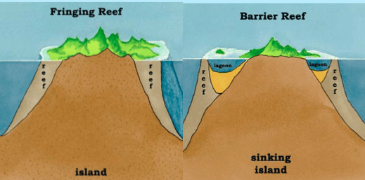 Fringing reef ,Barrier Reefs