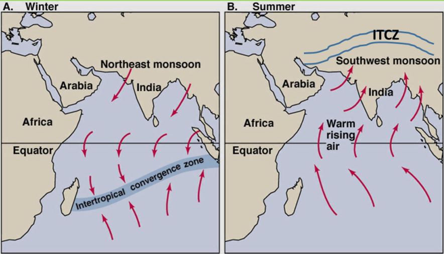 Tropical Monsoon Climate  Tropical Maritime Climate Iasmania