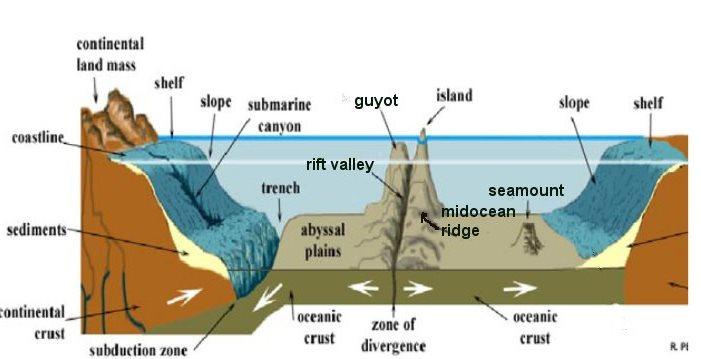 Ocean Floor Division