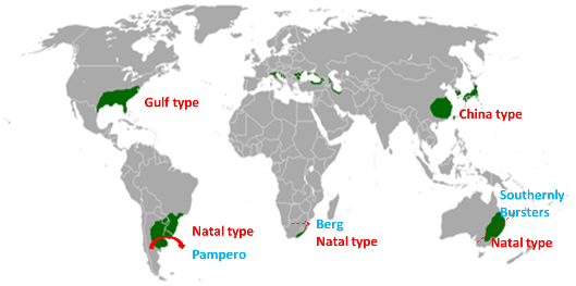 China type climate, Gulf type Climate, Natal type climate