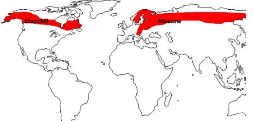 Siberian Climate