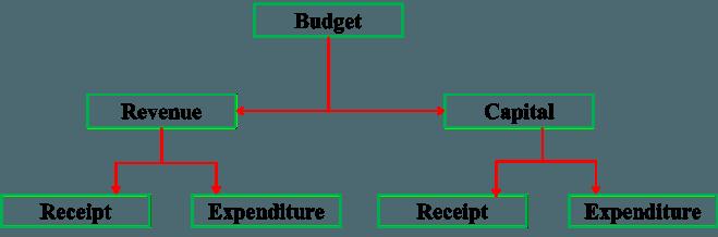 Government Budget
